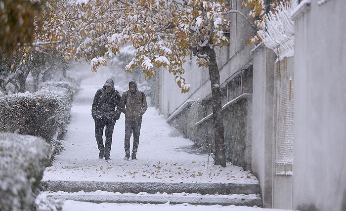 برف و باران در نیمه شمالی کشور/ بارش باران در تمام کشور از روز شنبه