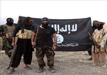 داعش: انتخابات «شرک» است!/ مراکز اخذ رأی در مصر مورد هدف قرار می گیرد