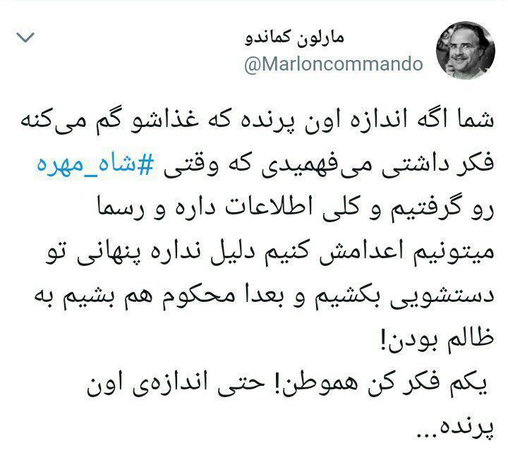 #شاه_مهره سازمان سیا در سایتهای موشکی ایران چه میکرد؟