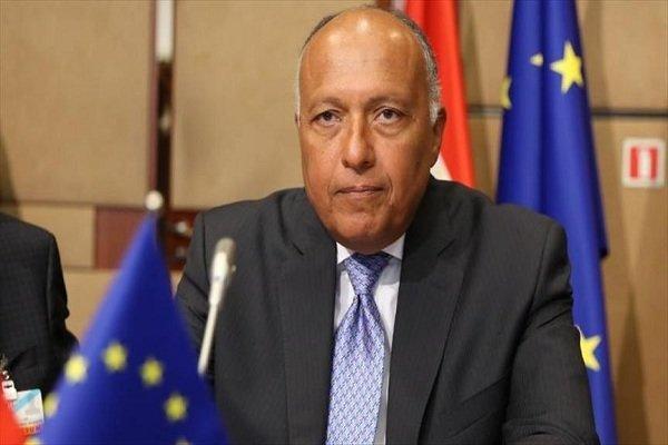 مبارزه با تروریسم؛ موضوع گفتگوی سامح شکری با وزیر دفاع فرانسه