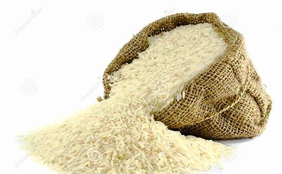 دلیل واردات برنج در فصل ممنوعیت چیست؟