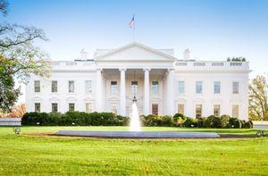 یک زن با خودرو وارد دیوار کاخ سفید شد