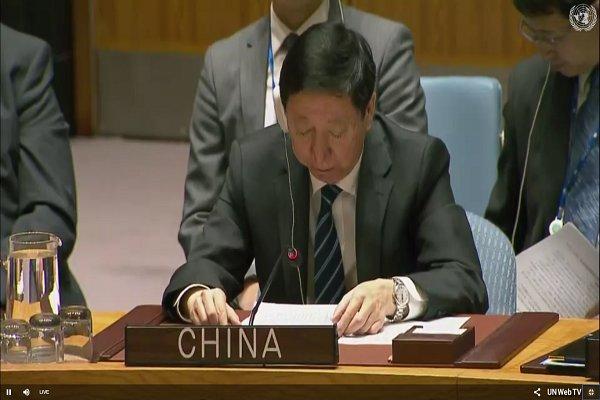 پکن از حملات تروریست ها در سوریه انتقاد کرد/ موفقیت نشست «سوچی»