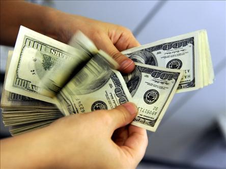 دلایل افزایش نرخ دلار در روزهای اخیر چرا نرخ ارر روند صعودی گرفته؟/ حکایت اسب چموش و دولت ...