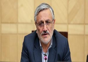میرزایی نیکو: نمایندگان مجلس برای خواستار تعطیلی شورا ها شدند