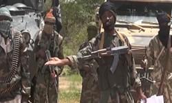 پلیس نیجریه از بازداشت بیش از ۲۰ نفر از عناصر «بوکو حرام» خبر داد