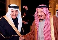 درخواست برادر ملک سلمان از معترضان برای بازخواست پادشاه و ولیعهد