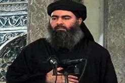 الشرق الاوسط: البغدادی به افغانستان منتقل شده است
