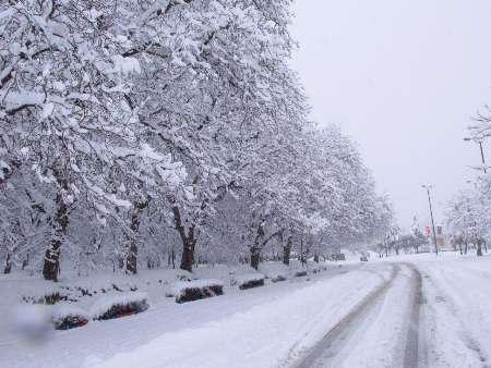 آخرین وضعیت آب و هوا در کشور؛ باران کل کشور را فرا میگیرد/ استان البرز سفید پوش میشود