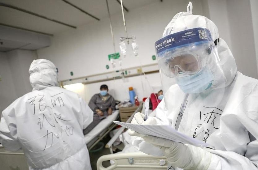 رئیس سازمان دامپزشکی: ممنوعیت واردات حیوانات از کشورهای آلوده به کرونا