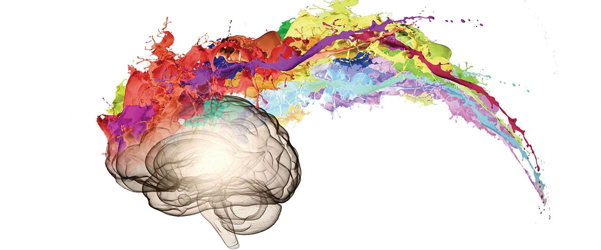 «روانشناسی» رشتهای برای سنجش روحیات و تمایل انسانها / صفر تا صد موقعیت شغلی روانشناسان