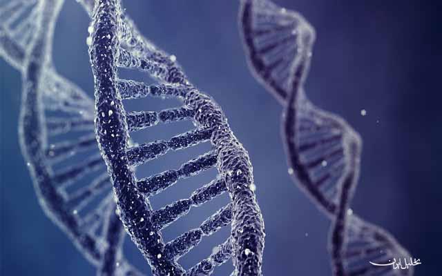 نانومهندسی DNA به رهاسازی دقیق داروهای سرطانی کمک میکند