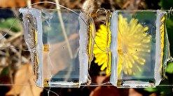 راهبردی جدید برای تولید صفحههای خورشیدی شفاف ارائه شد
