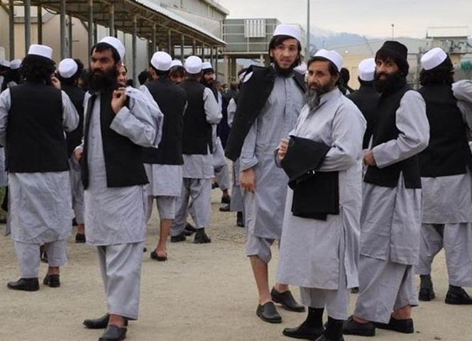 1118405 494 » مجله اینترنتی کوشا » مخالفت فرانسه با آزادی زندانیان طالبان 1