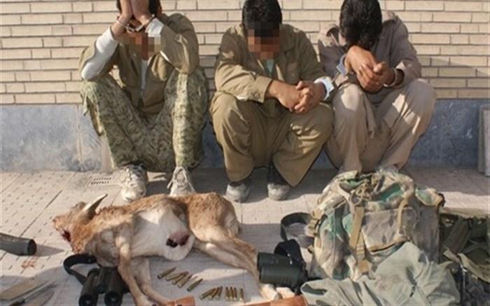 دستگیری یک گروه شکارچی حرفهای در دماوند